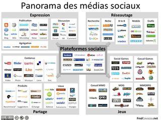 Panorama Medias sociaux 2009 (F.Cavazza)