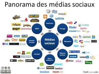 Panorma MediasSociaux 2008 (F. Cavazza)